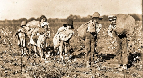 21children-picking-cotton-in-texas-in-1913-often-falsely-claimed-to-be-irish-slave-children-by-purveyors-of-the-irish-slavery-myth.-humanities-texas-1.jpg