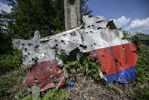 malaysia-airlines-ukraine-crash8.jpg