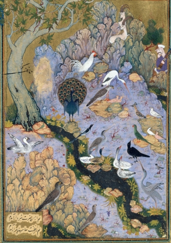 'The_Concourse_of_the_Birds',_Folio_11r_from_a_Mantiq_al-tair_(Language_of_the_Birds)_MET_DT227734.jpg