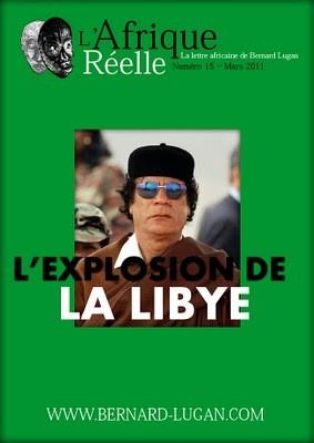 libye,afrique,afrique du nord,affaires africaines,méditerranée,monde arabe,actualité,monde arabo-musulman