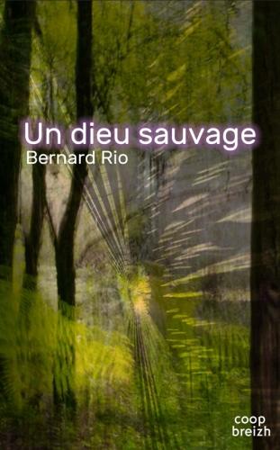 un-dieu-sauvage-roman-bernard-rio.jpg