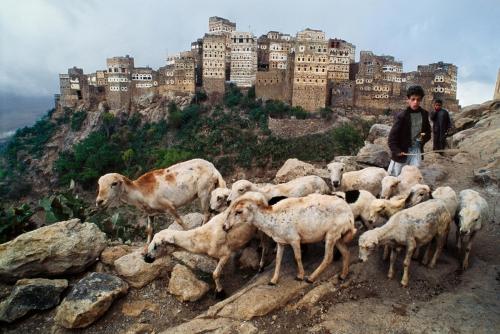 yemen-10052nf_0.jpg