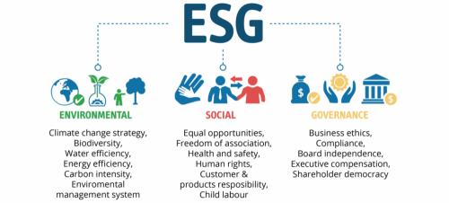 ESG-Criterias-1536x696-1-1024x464.png