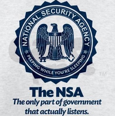 nsa-logo-parody.jpg