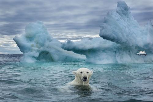 Arctique-fond-comme-jamais.jpg