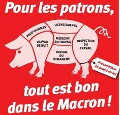 maccochon.jpg