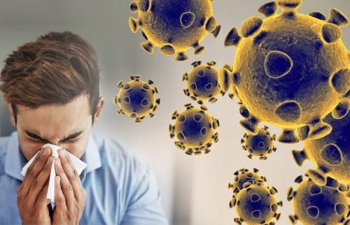 coronavirus-graphic-web-feature-620x400.jpg