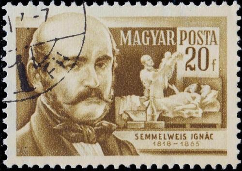 semmelweis3.jpg