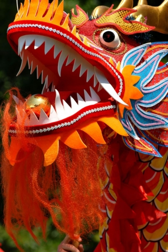 dragon-dance-dragon-head.jpg