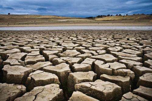 drought10.jpg