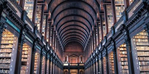 Bibliotheque-ligne-droite.jpg