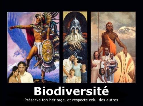 biodiv22049088.jpg