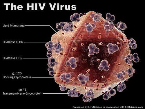 aids8623f91f8bb.jpg