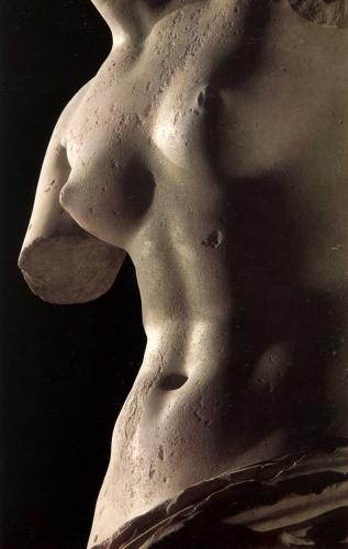 vénus de milo, détail, marbre de paros, h. 2.02 m.jpg