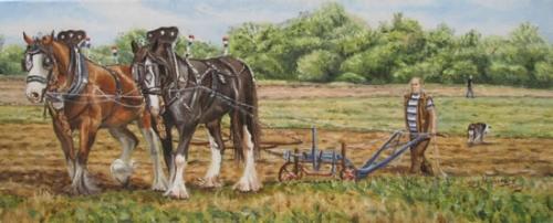 horse-plough-550.jpg