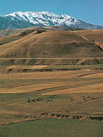 pasturelands-Zagros-Mountains-Iran.jpg