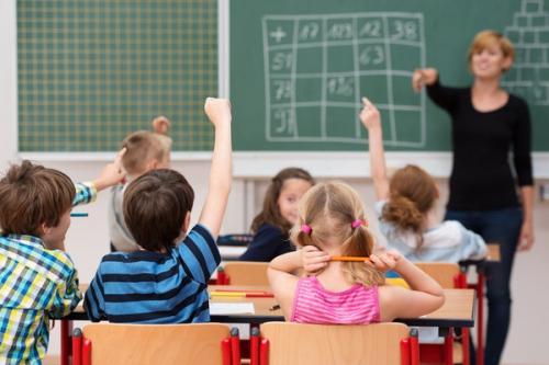 Pres-75-eleves-scolarises-dans-ecoles-campagne-publiques-sont-inscrits-dans-classe-multiniveau_0_730_400.jpg