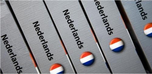 Nederlands-woordenboek.jpg