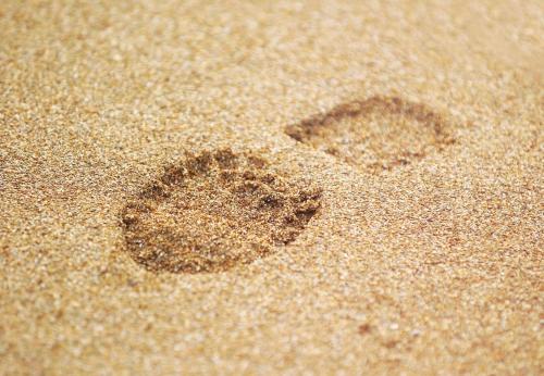 footggghhh29895164097.jpg