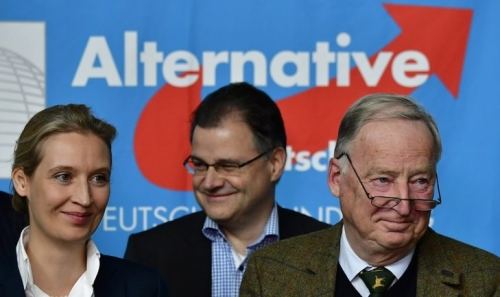 parti-AlternativelAllemagne-AfD-lorganisation-nouvelles-elections_0_729_434.jpg