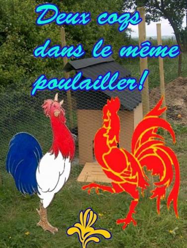 wallonie-france2.jpg