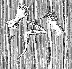 AMP_4531.jpg