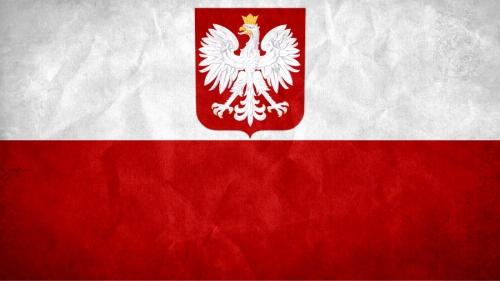 poland_grunge_flag_by_syndikata_np-d5nm39f.jpg
