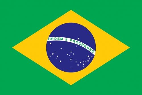 Easyrecyclage_Drapeau_Brésil.jpg