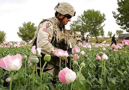 us_opium.jpg