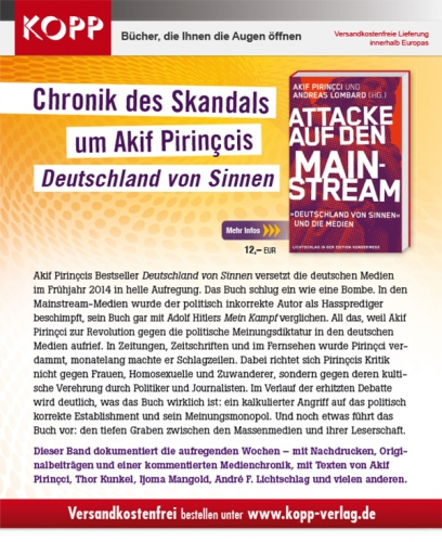 Newsletter_Attacke-auf-den-Mainstream.jpg