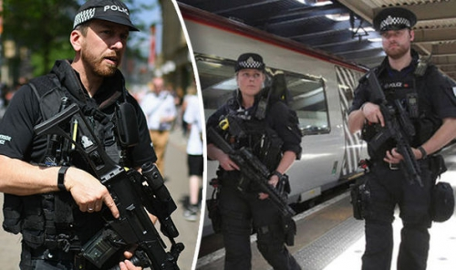 Armed-Police-809555.jpg