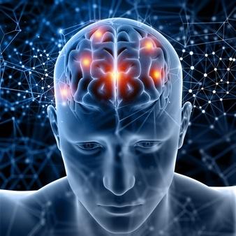 figure-medicale-3d-cerveau-surbrillance_1048-8345.jpg