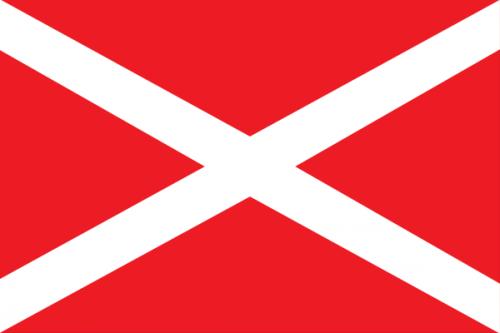 600px-Flag_Nashi.svg.png