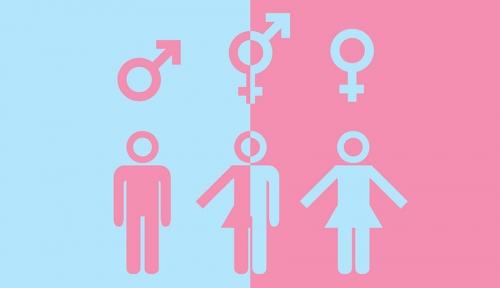 Gender-Identity-900.jpg