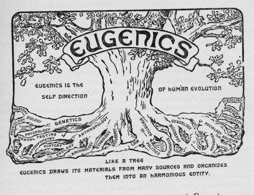 eugenics_tree_1921.jpg