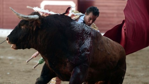 matador-ivan-fandino-le-17-juin-2017-a-aire-sur-l-adour_5899775.jpg