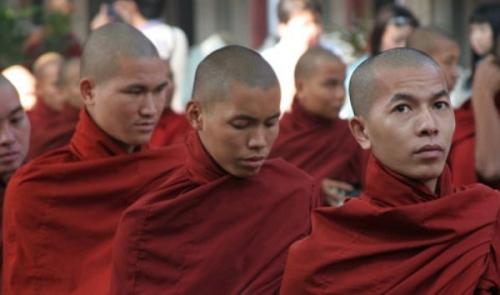 moinesbirmans.jpg