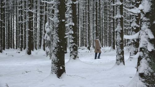 promenade-manteau-neigeux-rhenanie-palatinat-foret-de-coniferes.jpg