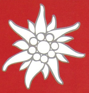 Logo-fleur.jpg