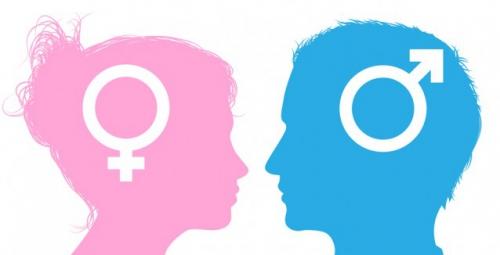gender8836981_orig.jpg