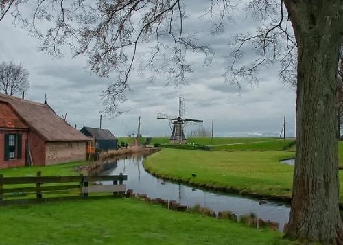 nederlands-landschap.jpg