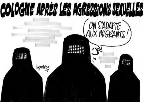 cologne_agressions_sexuelles_migrants-tv_libertes.jpg