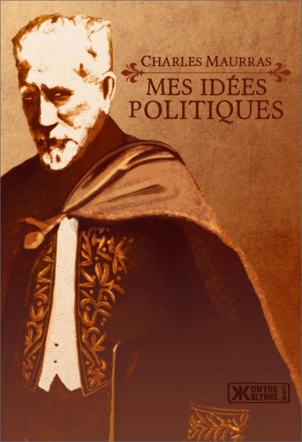 mes-idees-politiques.jpg