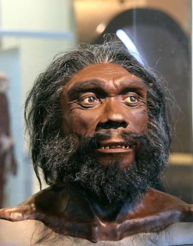 d7a8cb529e_49619_homo-heidelbergensis-tim-evanson-flickr-cc-20.jpg