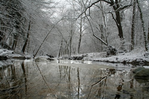 snowy-mill-creek-winter.jpg