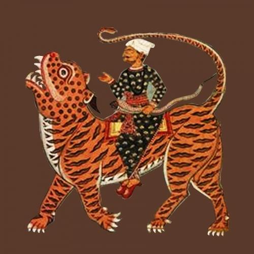 riding-the-tiger-asok-mukhopadhyay.jpg