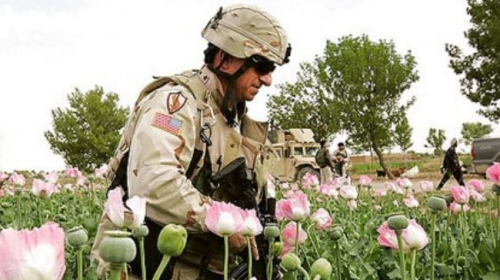 afghan_opium-fields-us-soldiers-10.jpg
