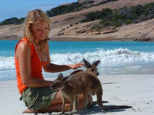 Australia_WA_Esperance_beach_kangaroo_955fb080db7b417d8eeb02a278179307.jpg