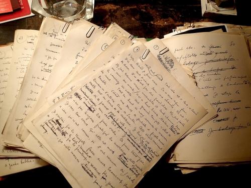 0a43093_232174787-2-manuscrit-mort-a-cre-dit-photo-2-je-ro-me-dupuis.JPG