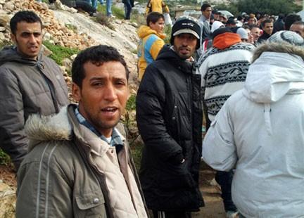 immigration432.jpg